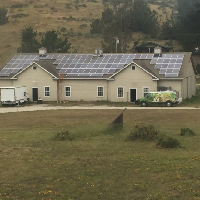 Wildlife Associates Roof with Solar